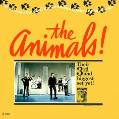 Artist: The Animals Album: Animal Tracks Song: Don't Let Me Be Misunderstood Genre: Blues Rock Iconic Album Covers, Rock Album Covers, Classic Album Covers, Music Album Covers, Music Albums, Lp Vinyl, Vinyl Records, Vinyl Art, Good Rock Songs