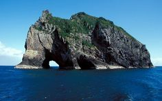 Bay of Islands north of New Zealand - someday I'll go there again!