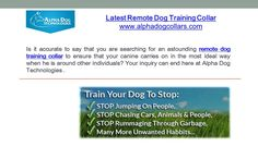 Is it accurate to say that you are searching for an astounding remote dog training collar to ensure that your canine carries on in the most ideal way when he is around other individuals? Your inquiry can end here at www.alphadogcollars.com  .