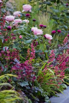 40 inspirations pour un jardin anglais Pink roses purple thistles dark-leaved Actea and Heuchera with variegated grasses. The post 40 inspirations pour un jardin anglais appeared first on Garten. Beautiful Gardens, Beautiful Flowers, Heuchera, Garden Cottage, Tuscan Garden, Prairie Garden, Rose Cottage, Different Flowers, Colorful Garden