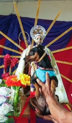 The Weirdest Festival in Nicaragua: Blessing the Dogs