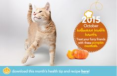 Check out our October Health Tip & Recipe: Savory Pumpkin Meatballs!