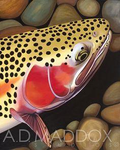 Marble Canyon Rainbow #admaddox #rainbowtrout #oiloncanvas #troutart #flyfishing #fishart #flyfishingart #rainbowspawn www.admaddox.com