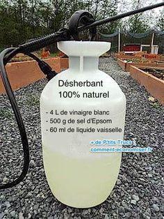 Heureusement, il existe un désherbant 100% naturel et tout aussi efficace que le RoundUp. Tout ce dont vous avez besoin, c'est du vinaigre blanc, de sel d'Epsom et du liquide vaisselle. Découvrez l'astuce ici : http://www.comment-economiser.fr/plus-besoin-acheter-roundup-utilisez-desherbant-naturel.html