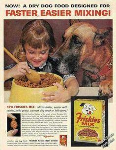 1962 Nice Fawn Great Dane Photo Friskies Dog Food Ad   eBay