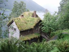Artists's house with grass roof, Norway