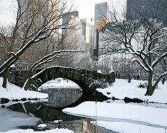 Winter in New York City Photography - Urban Landscape - Snow Trees Ice - Central Park Photo - Home Decor - Gray Grey Print - Wall Art via Etsy