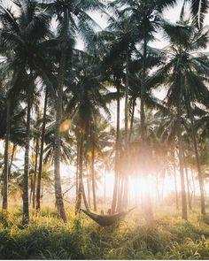 """5,591 Likes, 33 Comments - 🍍 Hawaii 🍍 (@nakedhawaii) on Instagram: """"Daydreams. O'ahu, Hawaii. Photo by @robstrok #nakedhawaii"""""""