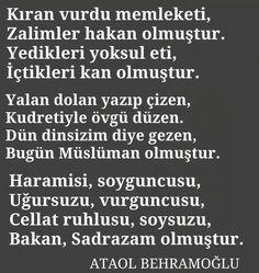 çok güzel bir şiir.