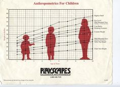 Anthropometry of a 4 year old child google search for Las medidas de una casa xavier fonseca pdf gratis