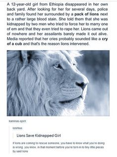 Lion saves kidnapped girl - - More memes, funny videos and pics on Sweet Stories, Cute Stories, Beautiful Stories, Funny Memes, Hilarious, Funny Videos, Angst Quotes, Kidnapped Girl, Funny Animals