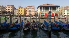 Early morning in Venice and the gondolas are all ready to go. http://www.venice-italy-veneto.com/venice-in-summer.html