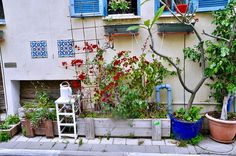 Wandering Tel Avivs