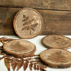 Set of 4 Rustic Wood Slice Coasters with rubber bumpers. Wood burned fern botanical study design on spalted oak.