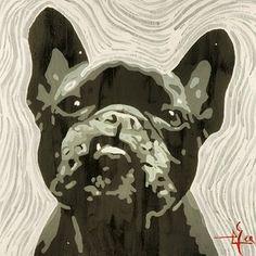 Zucca portrait