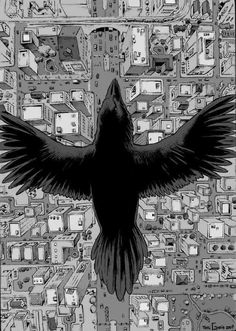 Raven by Toni Greis