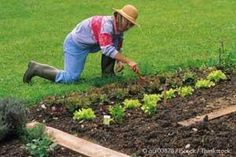 Could healthy soils hold the key to your good health? Learn more from these experts. http://articles.mercola.com/sites/articles/archive/2013/12/23/soil-quality.aspx