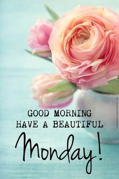 Have a beautiful Monday! ❤️