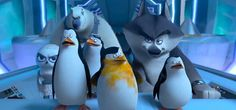 """"""" As the opening line of a plot summary by DreamWorks Animation suggests, the animation studio's latest release, Penguins of Madagascar, deals with espionage and conspiracy. Dreamworks Movies, Dreamworks Animation, Smile And Wave, Just Smile, Madagascar Movie, Good Animated Movies, Penguin Cartoon, Korean Variety Shows, Cartoons Love"""