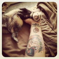 Ferret, ferret owner, ferret tattoo  (I think it should say, 'ferret, human owner, ferret tattoo')