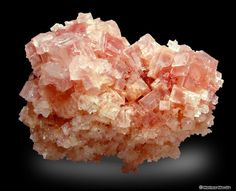 COLLECTING SITES Pink Halite from Searles Dry Lake after cleaning NaCl. Sodium Chloride. Hardness: 2.0 - 2.5