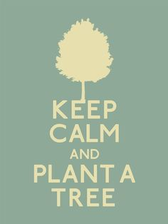 Spend time with your dad this father's day and get outside and plant a tree! It is a great way to give back!