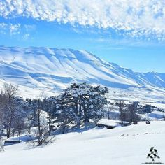 On earth there is no heaven, but there are pieces of it.❄❄❄  By @eliesamarani #WeAreLebanon  #Lebanon #WeAreLebanon