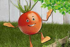 Welke groentjes zet je in je moestuin, super duidelijk en leuk voor kinderen.