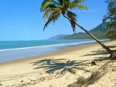 one of my favourite vacation destinations since we moved to australia! #thalabeachlodge #portdouglas