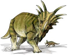Free Styracosaurus-dinosaur Clipart - Free Clipart Graphics, Images and Photos. Dinosaur Images, Dinosaur Pictures, Dinosaur Art, Dinosaur Fossils, Chuck Norris, Reptiles, Lizards, Dinosaur Wall Decals, Jurassic Park World