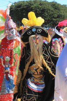 Que vivan los helechales! Carnaval en Huayacocotla Veracruz, Mexico