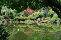 Náš krásný - zariadený byt 5.JPG otvorena-kuchyna_res.jpg japonska-zahrada.jpg 10 tipov
