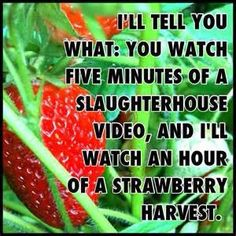 This is kinda hard core but hilarious!Oh noooo not the strawberries why you monster!!Lol ok having to much fun with this!;)