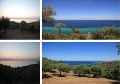 Plot with private beach - Thassos Island, Macedonia (Greece)