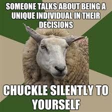 Individuality // Funny // Sociology // Sheep
