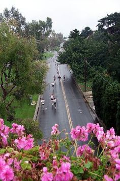 The CDM Scenic 5K walk, this has been walked for 30 years now!