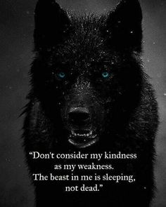97 EXCLUSIVE wolf quotes that will leave you speechless # speechless . - 97 EXCLUSIVE wolf quotes that leave you speechless - Wisdom Quotes, True Quotes, Great Quotes, Words Quotes, Quotes To Live By, Motivational Quotes, Inspirational Quotes, Sayings, Quotes Images