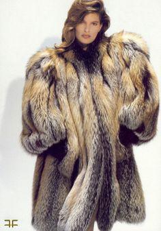 Golden Island Fox Fur