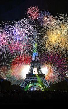 New Year Paris Fireworks 2014