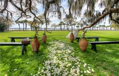 Providing stunning scenery, the Riverfront Lawn is the perfect backdrop to any Island Wedding Package. A large Live Oak tree will provide plenty of shade for your guests. There's even a backup ceremony space indoors in-case of inclement weather.Visit WebsiteJekyll Club Wedding