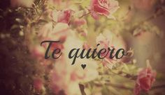Te quiero-- mi amor <3 te amo                                                                                                                                                     Más