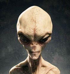 Alien Axioms : Photo