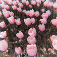 Image about pink in filter by ElfenZeugs on We Heart It Aesthetic Themes, Aesthetic Images, Aesthetic Photo, Pink Aesthetic, Aesthetic Wallpapers, Whatsapp Theme, Baby Icon, Princess Aesthetic, Wallpaper Iphone Cute