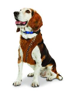 STAR WARS ™ Chewbacca ™ Dog Harness