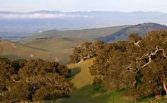Find hiking, biking and walking trails through Fort Ord here!