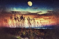 Moonrise over the dunes @ Hilton Head Island South Carolina