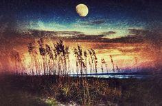 Moonrise over the dunes @ Hilton Head Island South Carolina