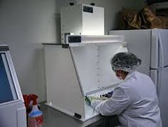 Image result for portable exhaust hood Exhaust Hood, Top Freezer Refrigerator, Exhausted, Kitchen Appliances, Cleaning, Pictures, Image, Ideas, Diy Kitchen Appliances