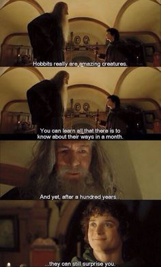 one of my favorite qoutes ever...half because of Frodo's face. Look at him he's so proud The Hobbit/LOTR