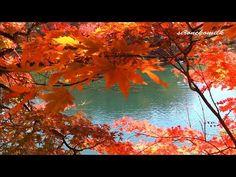 [HD]2014年 日本の風景 福島県 紅葉の五色沼 Japan's Landscape Autumn leaves at Fukushima - YouTube